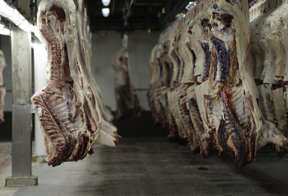 Cattle carcasses hang on hooks inside a cooler that stages cattle carcasses on hooks to then be sent out to the fabrication floor to be cut up and packaged at the JBS beef plant in Greeley, Colorado.