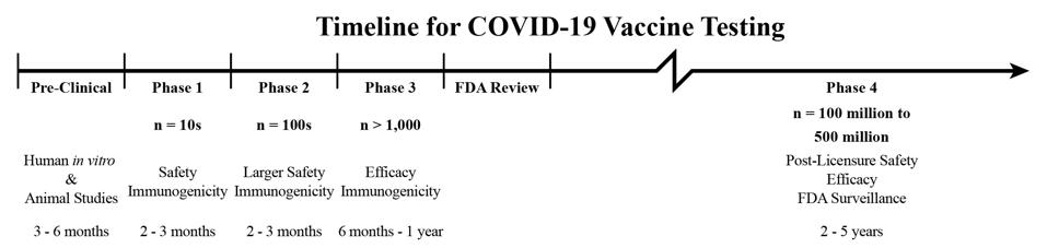 A timeline of safety evaluation for vaccines, adjusted to reflect the current pace of clinical trials and the necessary duration of post-licensure surveillance.