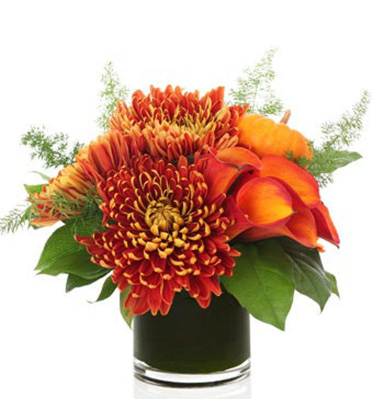 Autumn Birch Bouquet - Premium