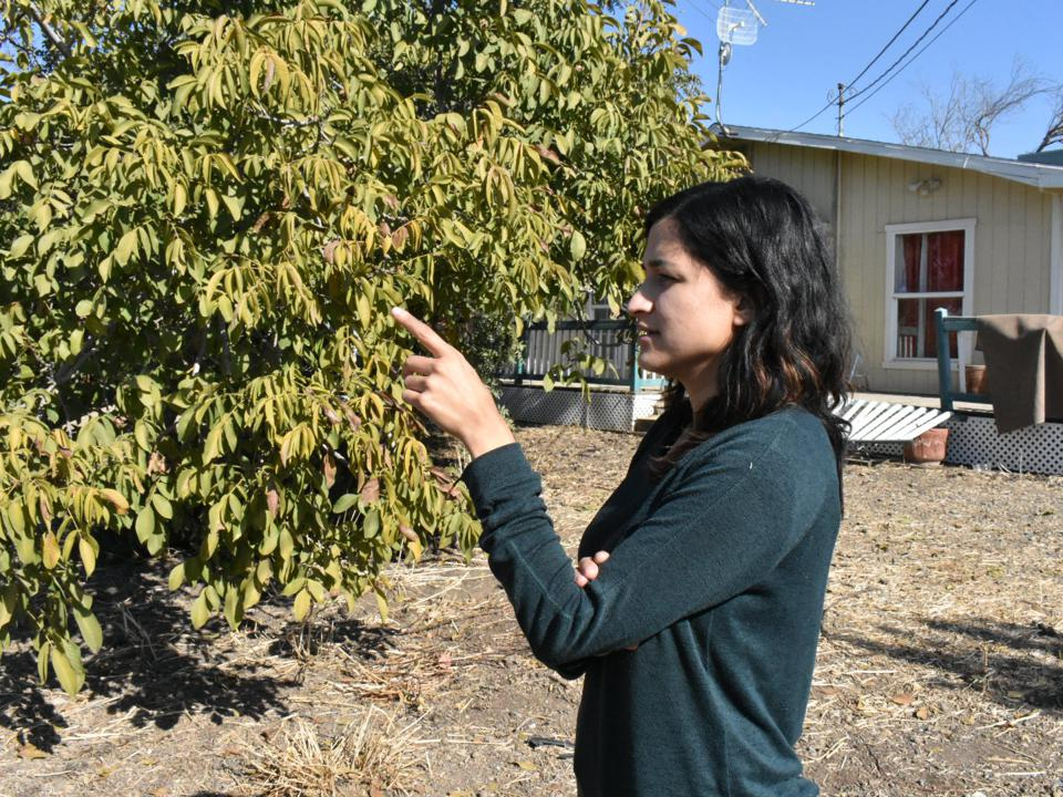 Jessica Gonzalez at the family farm in Merced, California.