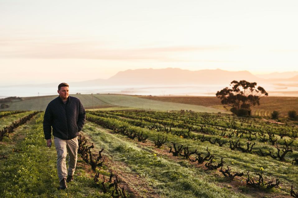Chris Alheit walks a vineyard in Western Cape, South Africa