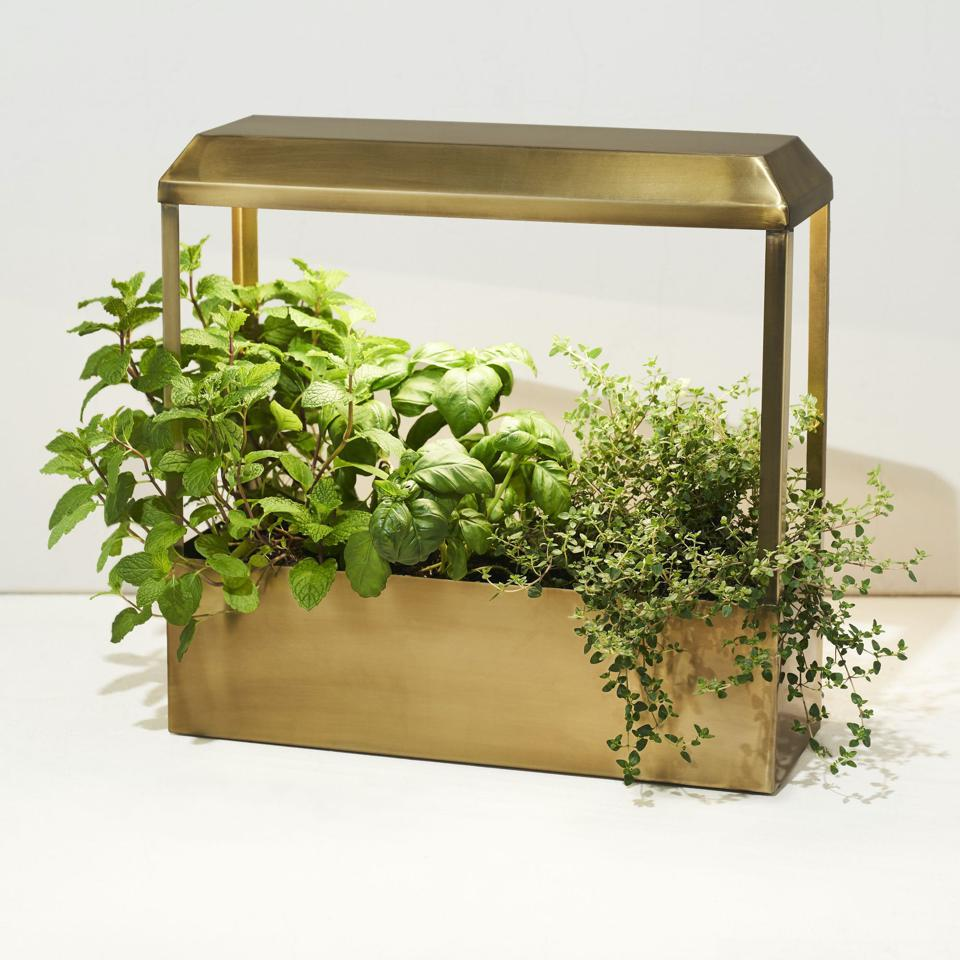 Modern Sprout's Grow-Anywhere Greenhouse
