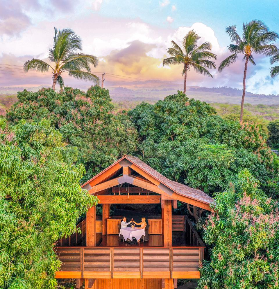Treehouse at Hotel Wailea