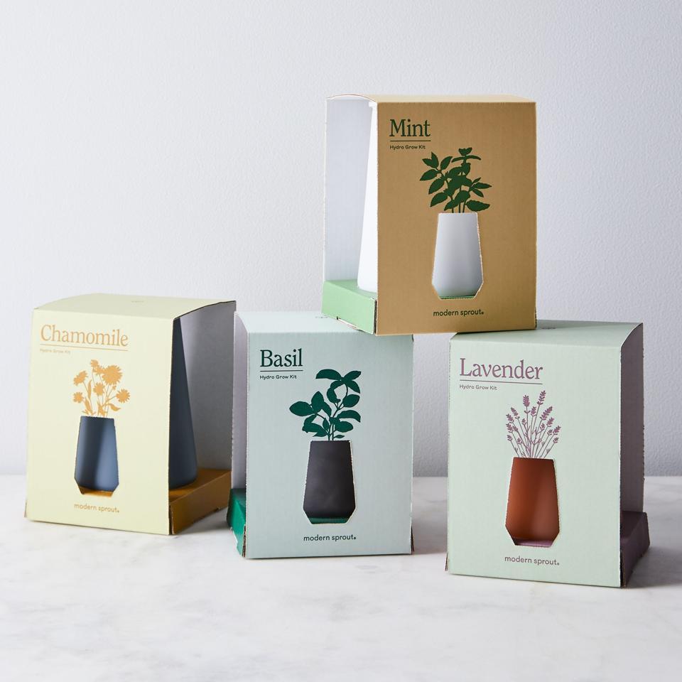 Hydro grow kit White Elephant gift idea