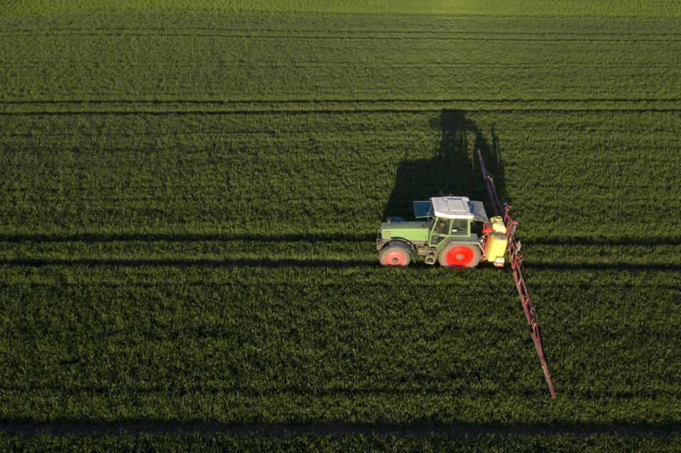 Aerial view of farming tractor spraying green field with pesticides or herbicide chemicals.