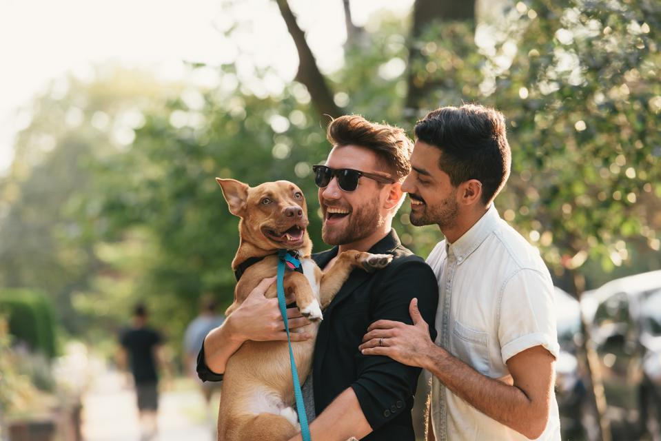 Young male couple carrying dog on suburban sidewalk