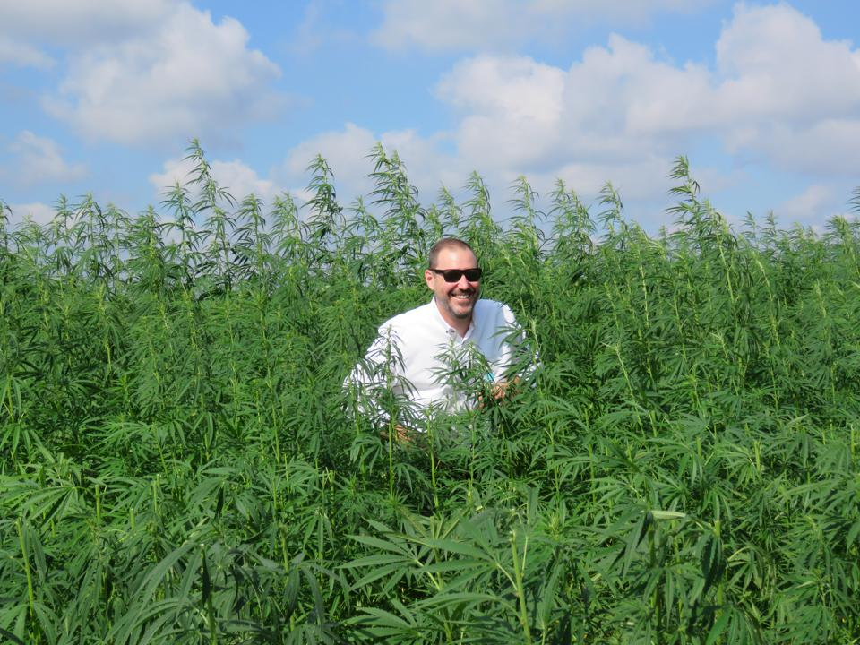 Bob Hoban standing in a hemp field in Poland