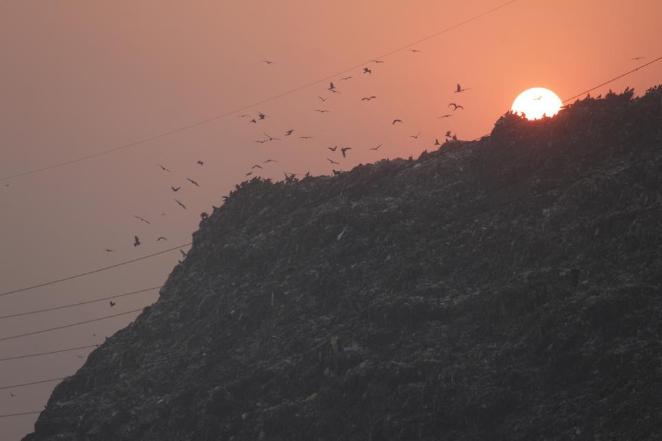 Delhi's Air Quality Deteriorates To 'SEVERE'