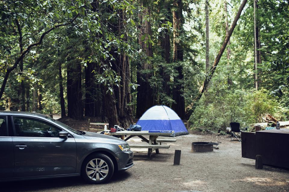 Car parked by wooden table in forest