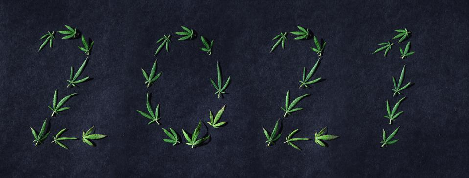 Pattern of cannabis leaves in the form of numbers 2021 on a dark background. The concept of a new year. Cannabis plant background. Copy space. The concept of marijuana love