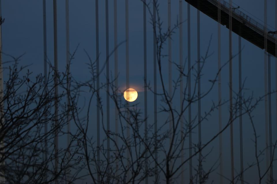 Full Moon in New York