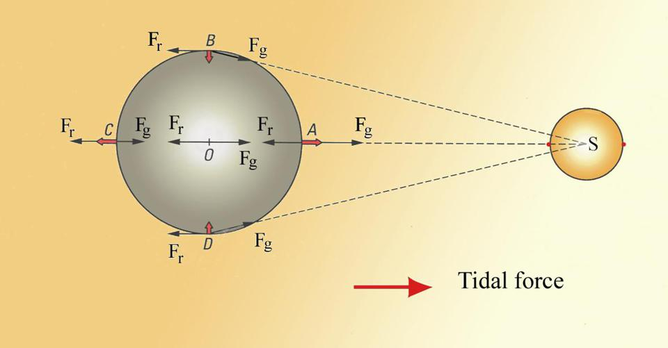 An illustration of how tidal forces arise on an object in a gravitational field.