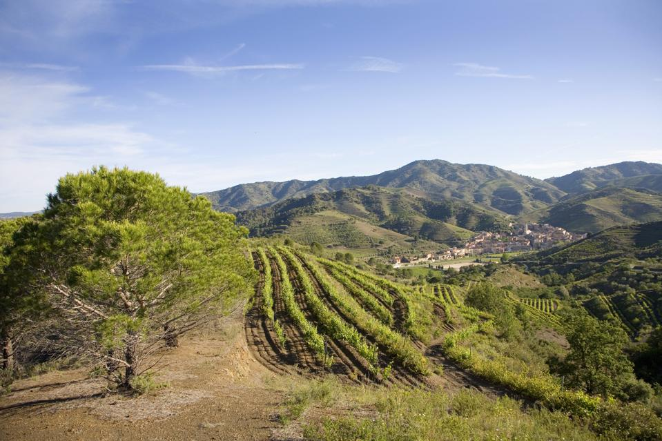 Wine region of Priorat with the town of Porrera in distance, Costa Dorada, Spain