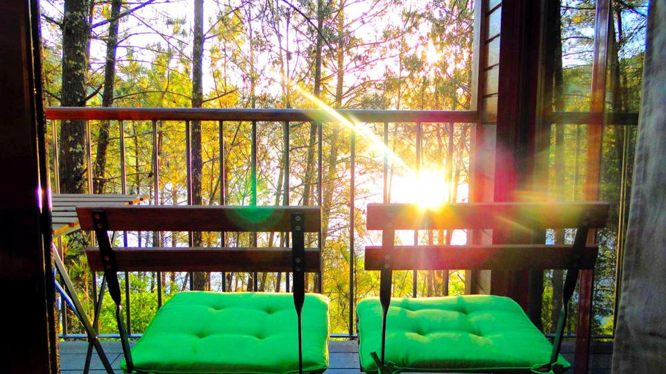 Sunlight glimmers through the trees in front of the terrace of a tree house in Portugal