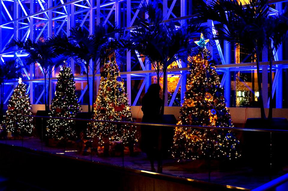 The Festival of Trees is an annual holiday tradition in town.