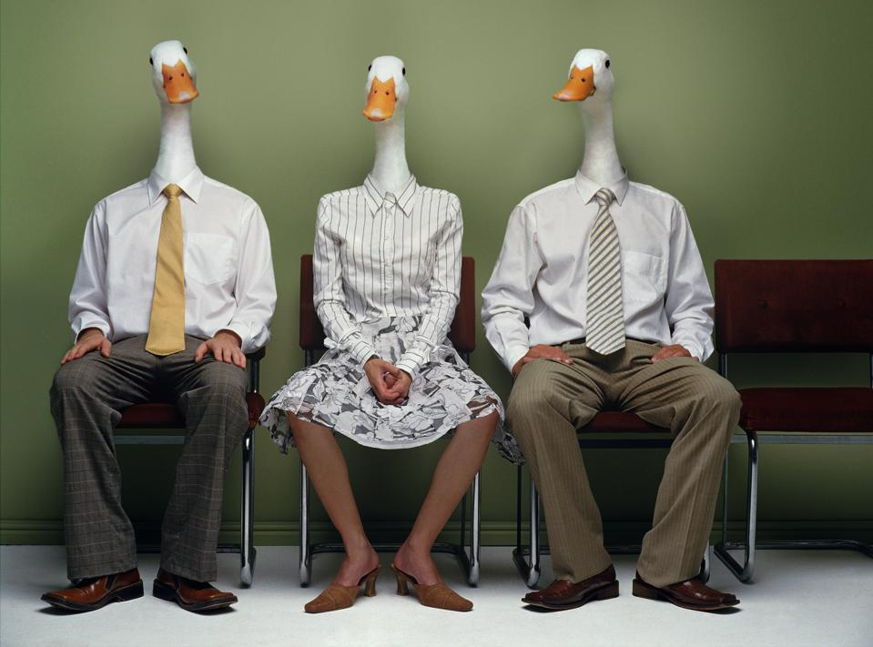 Two men and woman metamorphasised as ducks in row (Digital Composite)