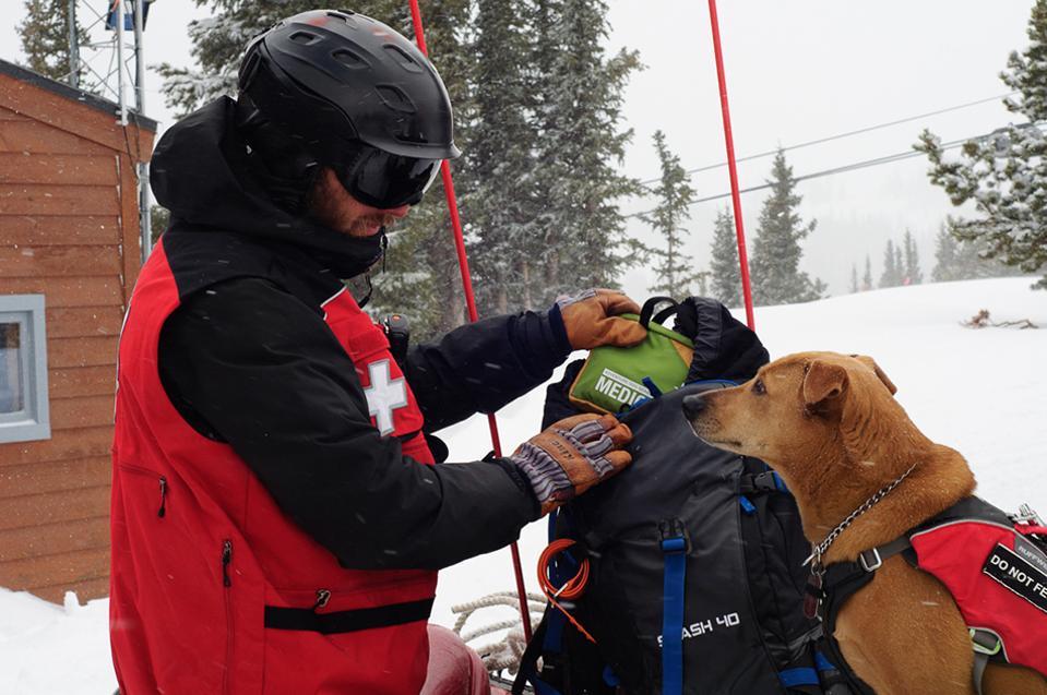 Adventure Medial Kit Trail Dog Kit