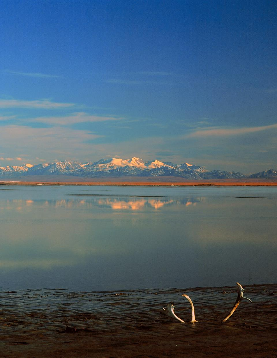 Coastal Plain from Hulahula Delta, ANWR, Alaska