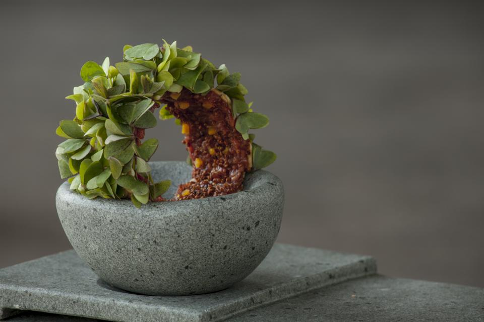 The dish of deer meat at Boragó restaurant in Chile is shaped like a beautiful wreath