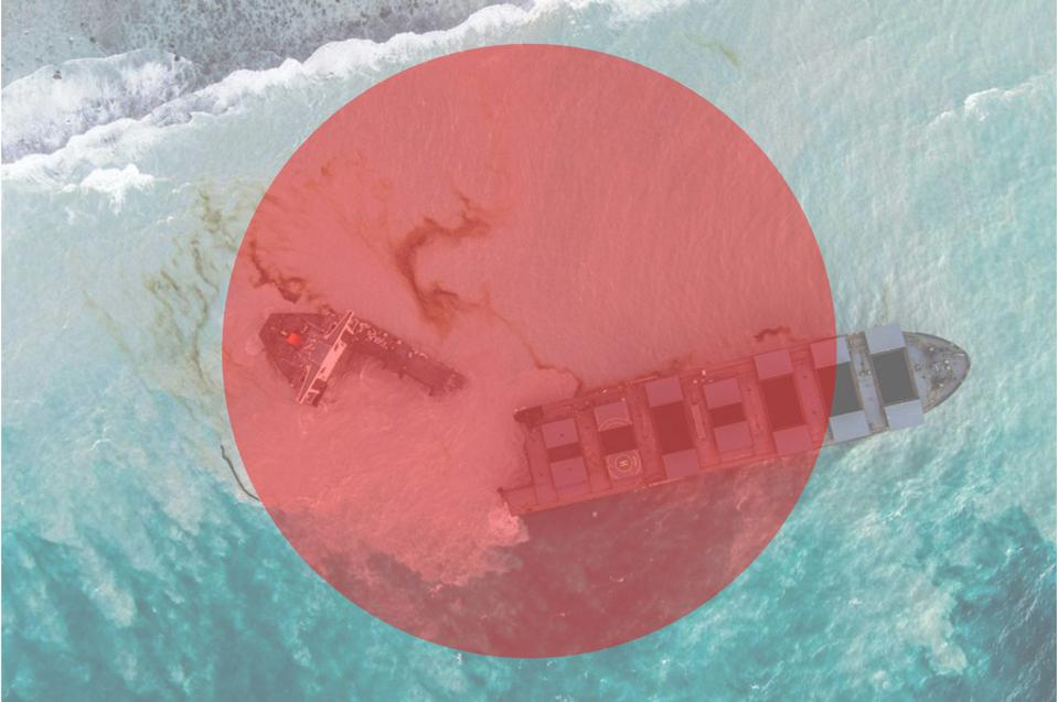 The Wakashio ran aground on the Indian Ocean island of Mauritius in July, triggering an oil spill and ecological catastrophe that has become a largely Japanese affair