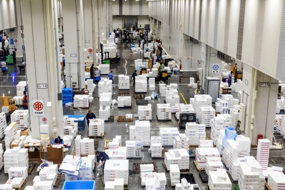 Japan, Honshu, Tokyo, Toyosu Fish Market, Packing and Packaging Area