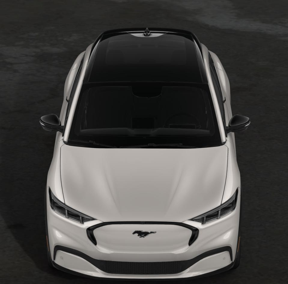 The Ford Mustang Mach-e crossover is an able competitor to the Tesla Model Y.