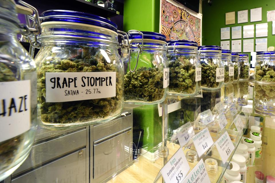 Denver County Pot Shops