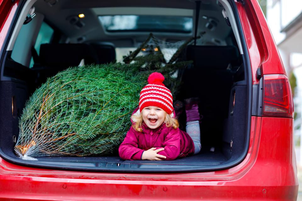 Toddler with Christmas tree inside of family car.
