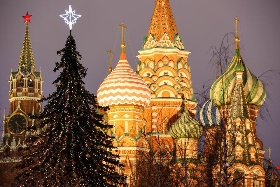Mosca decorata per le vacanze invernali