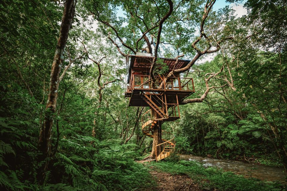 The rooms at Treeful Treehouse Sustainable Resort in Japan are perched in the trees
