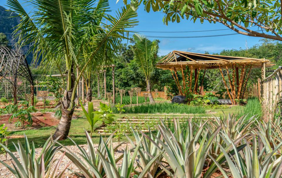 The farm at the Pavilions Anana Krabi hotel in Thailand has a bamboo structure over fields
