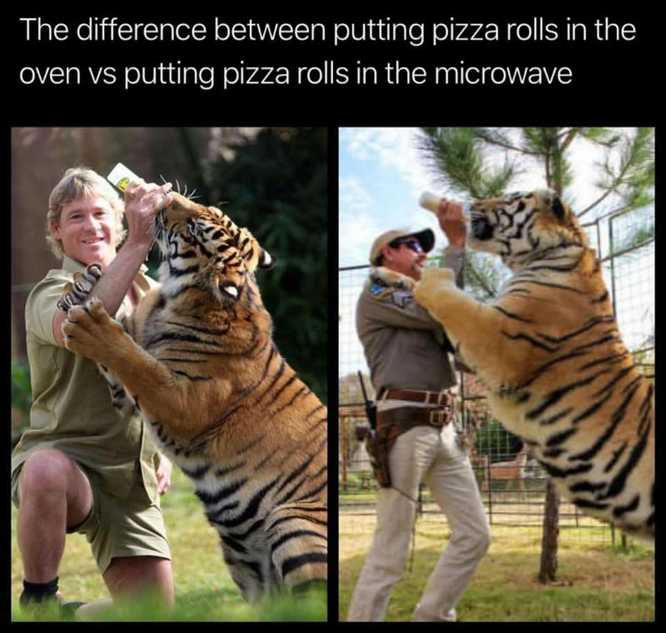 steve irwin vs tiger king meme