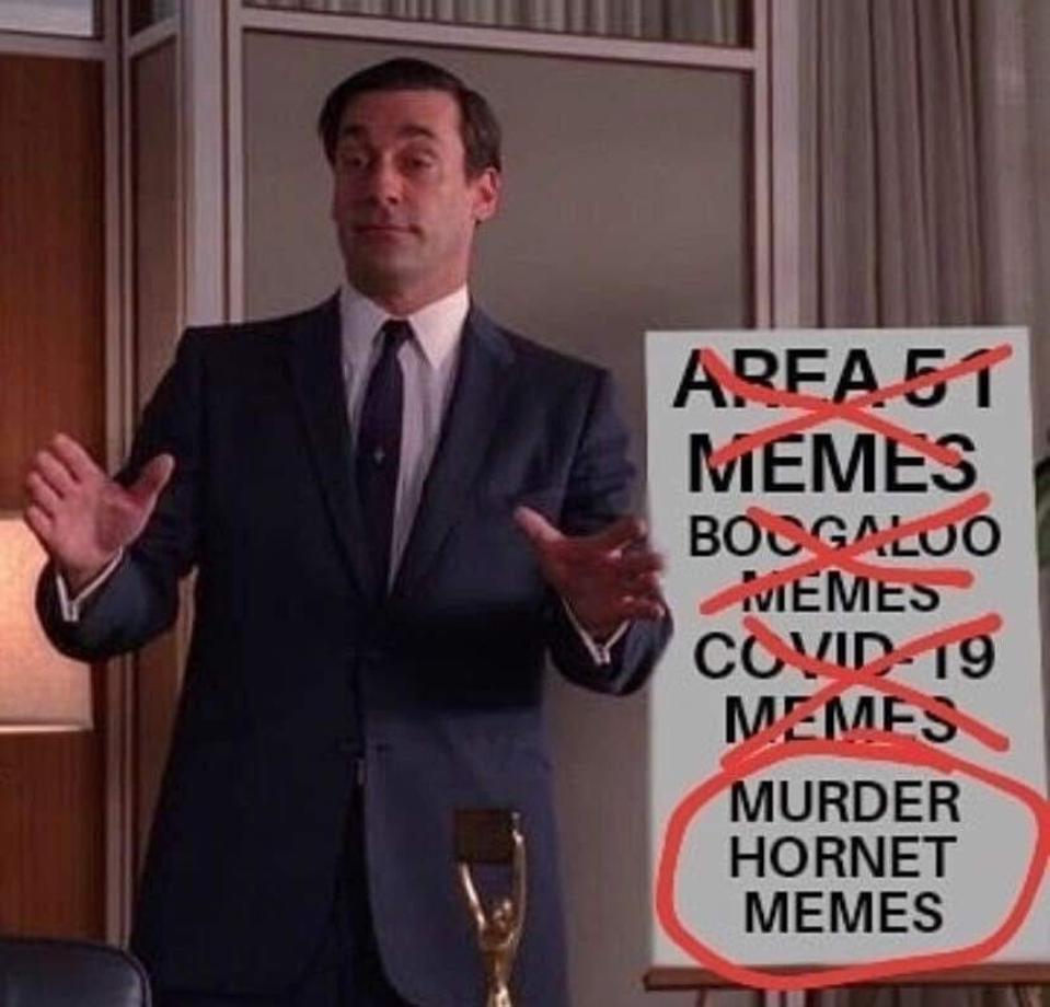 Murder hornet meme don draper