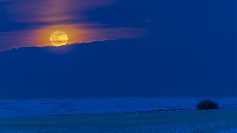 A full Moon rising. (Photo by: Alan Dyer/VWPics/Universal Images Group via Getty Images)