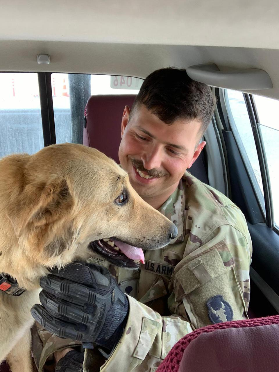 pet, military pets, dog, dog travel, traveling during Covid