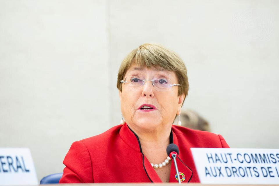 Michelle Bachelet, United Nation High Commissioner for Human Rights, has appointed a Special Rapporteur to look into human rights abuses linked to shipping and exposure to toxins