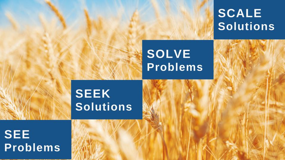 Ladder graphic of 4 S's: See Problems, Seek Solutions, Solve Problems & Scale Solutions