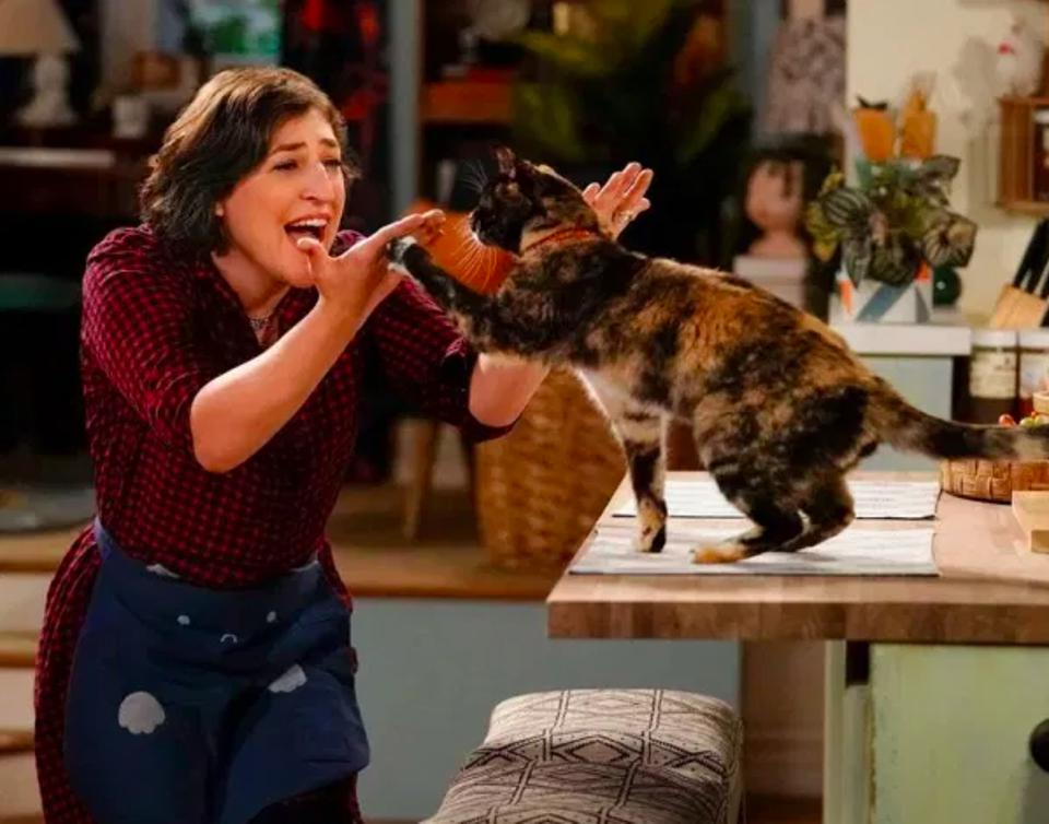 Mayim Bialik stars in new comedy ″Call Me Kat.″