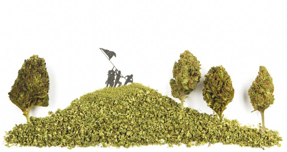 Cannabiscapes