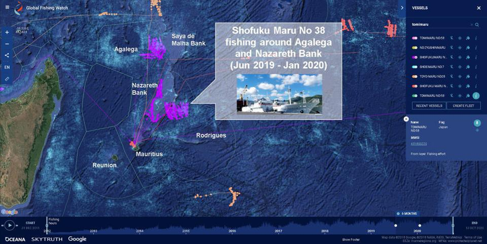 Japanese fishing activity along the Nazareth Bank, a prime breeding spot for pygmy blue whales