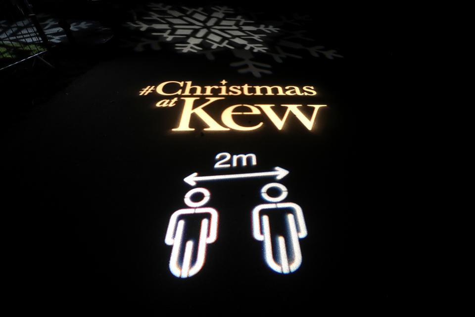 Christmas At Kew Gardens - Press Evening
