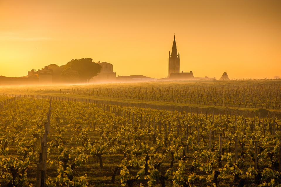Saint Emilion Sunrise, Bordeaux vineyard, France