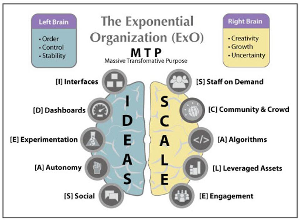 Exponential Organizations show attributes of structure and creativity, harnessing the power of new technologies to define themselves