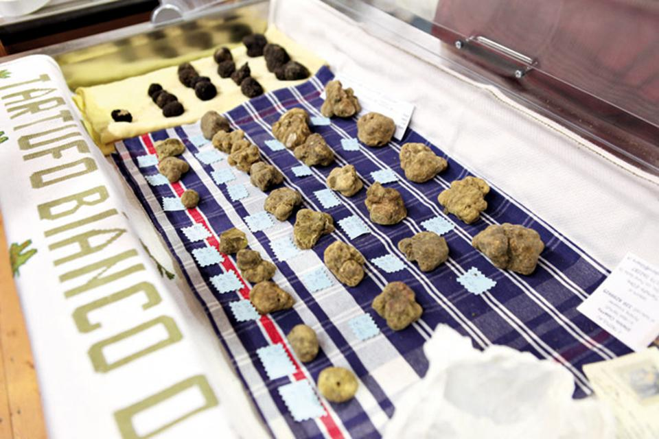 Truffles from Langhe region, northern Italy