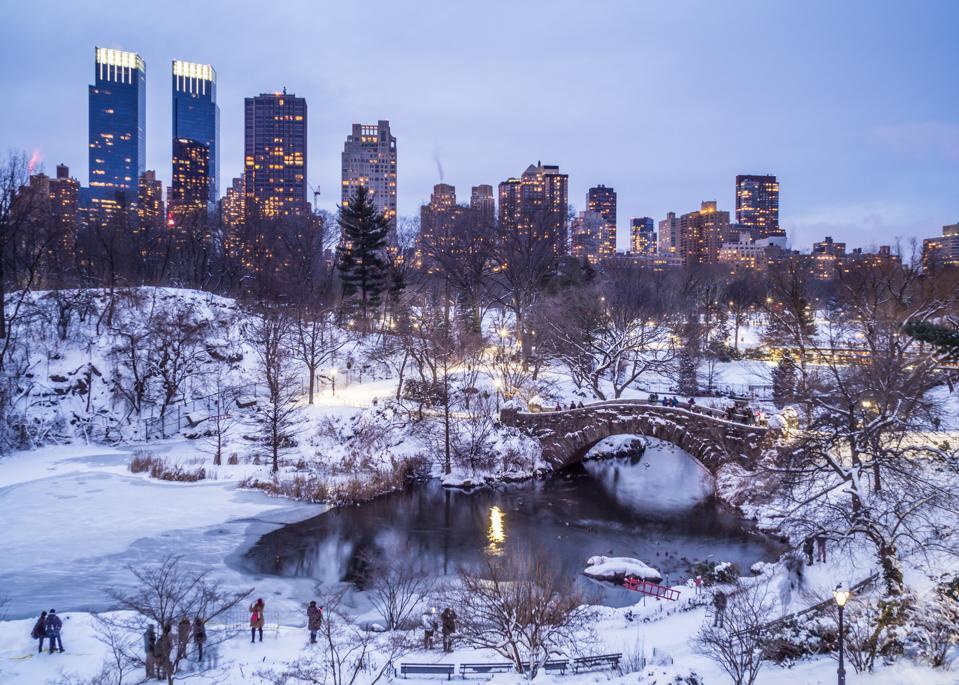 Snowy Central Park pond - New York