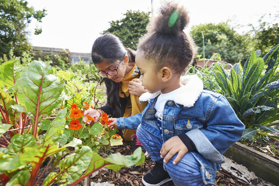 girl and boy looking at flower in community garden