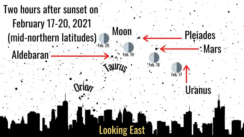 The Moon will lead the way to some superb stargazing sights this week.