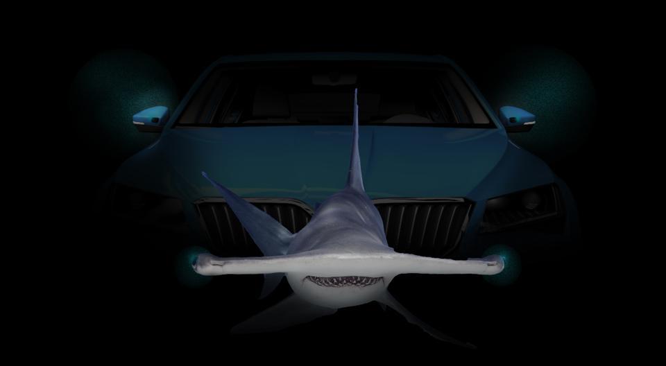 Stereo cameras on car with hammerhead shark.