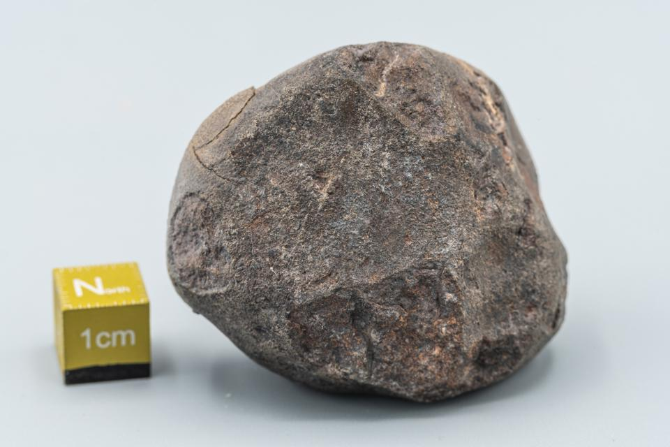 Chondrite Meteorite L Type isolated, a piece of rock formed in outer space in the early stages of Solar System as asteroids. This meteorite comes from a meteorite fall impacting the Earth at Atacama Desert