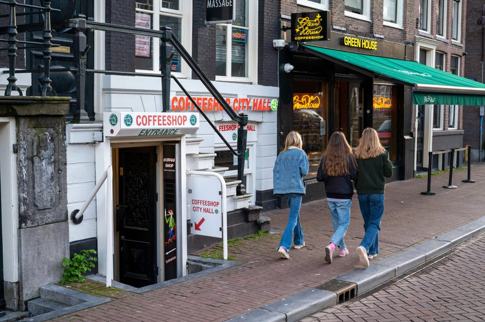 NETHERLANDS-DRUGS-CANNABIS-TOURISM-ECONOMY